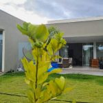 Casa a venda 3 suítes 4 vagas garagem Maxximo Garden Jardim Botânico DF