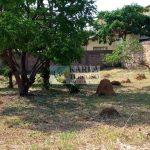 Lote comercial Quintas do Sol Quadra 1 Jardim Botânico Brasília-DF